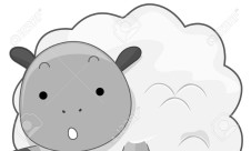 7811505-Cute-Sheep--Stock-Photo-sheep-cartoon